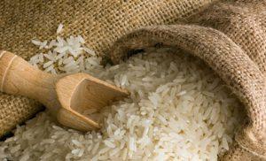 Investire on line nel riso