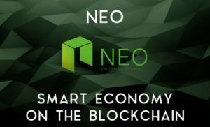 La Fondazione NEO adotta una nuova struttura organizzativa